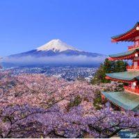 Haru - Spring - Musim Bunga